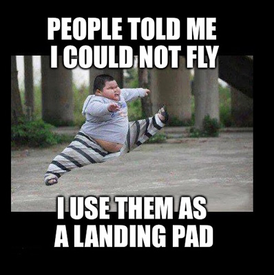 People-Told-Me-I-Could-Not-Fly-I-Use-Them-As-A-Landing-Pad